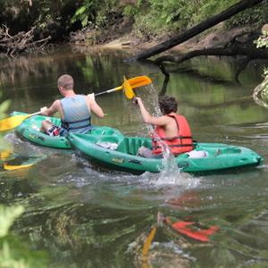 Balades en canoë sur la Leyre