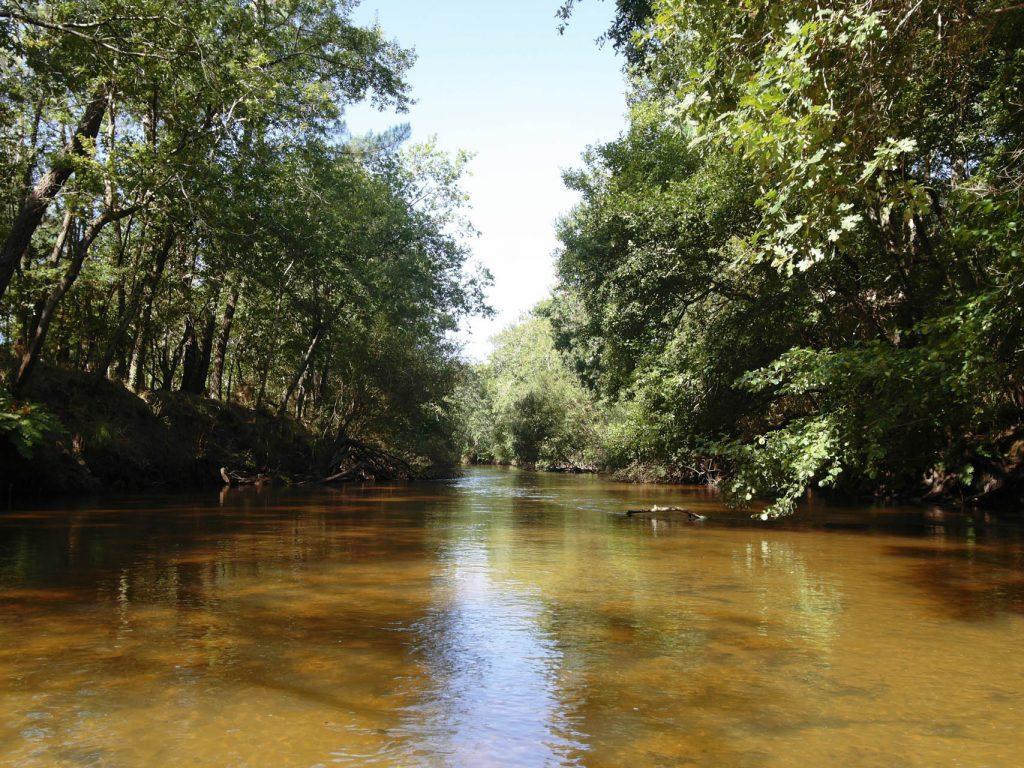 Le fleuve côtier de l'Eyre