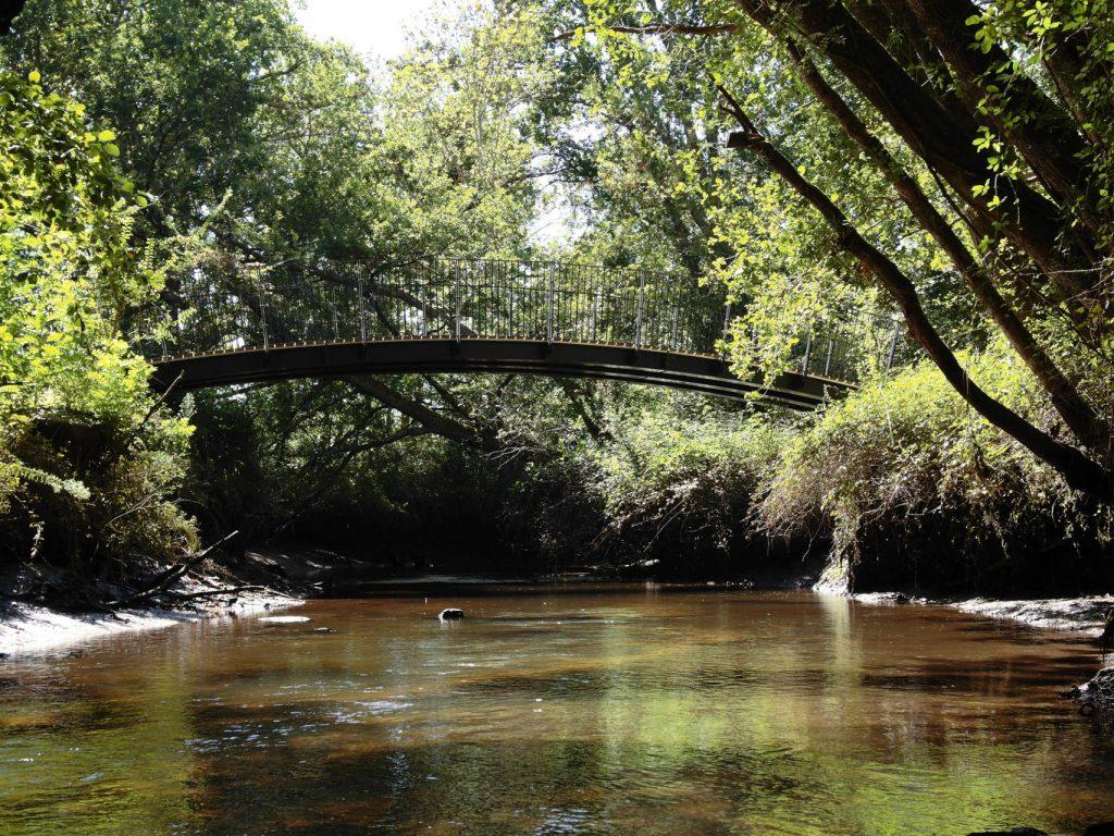 Pont sur la Leyre