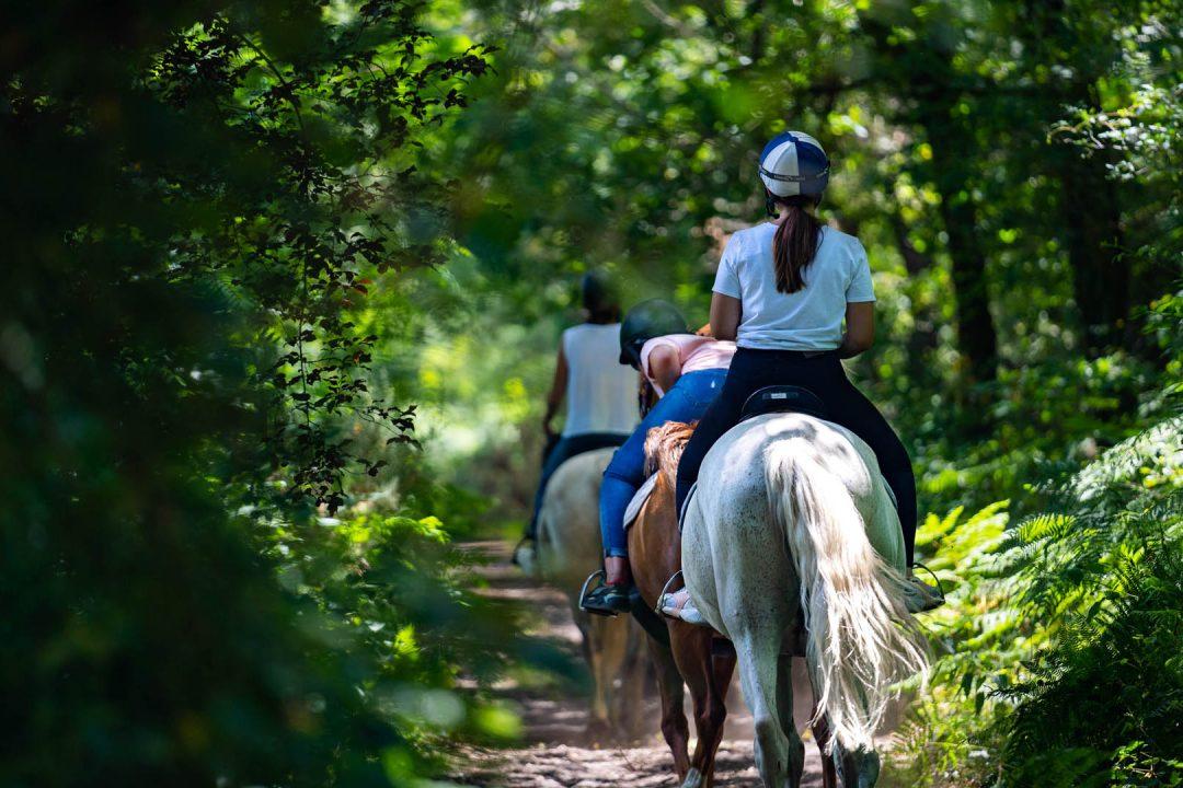 Balade à cheval en forêt © Villetorte Loisirs